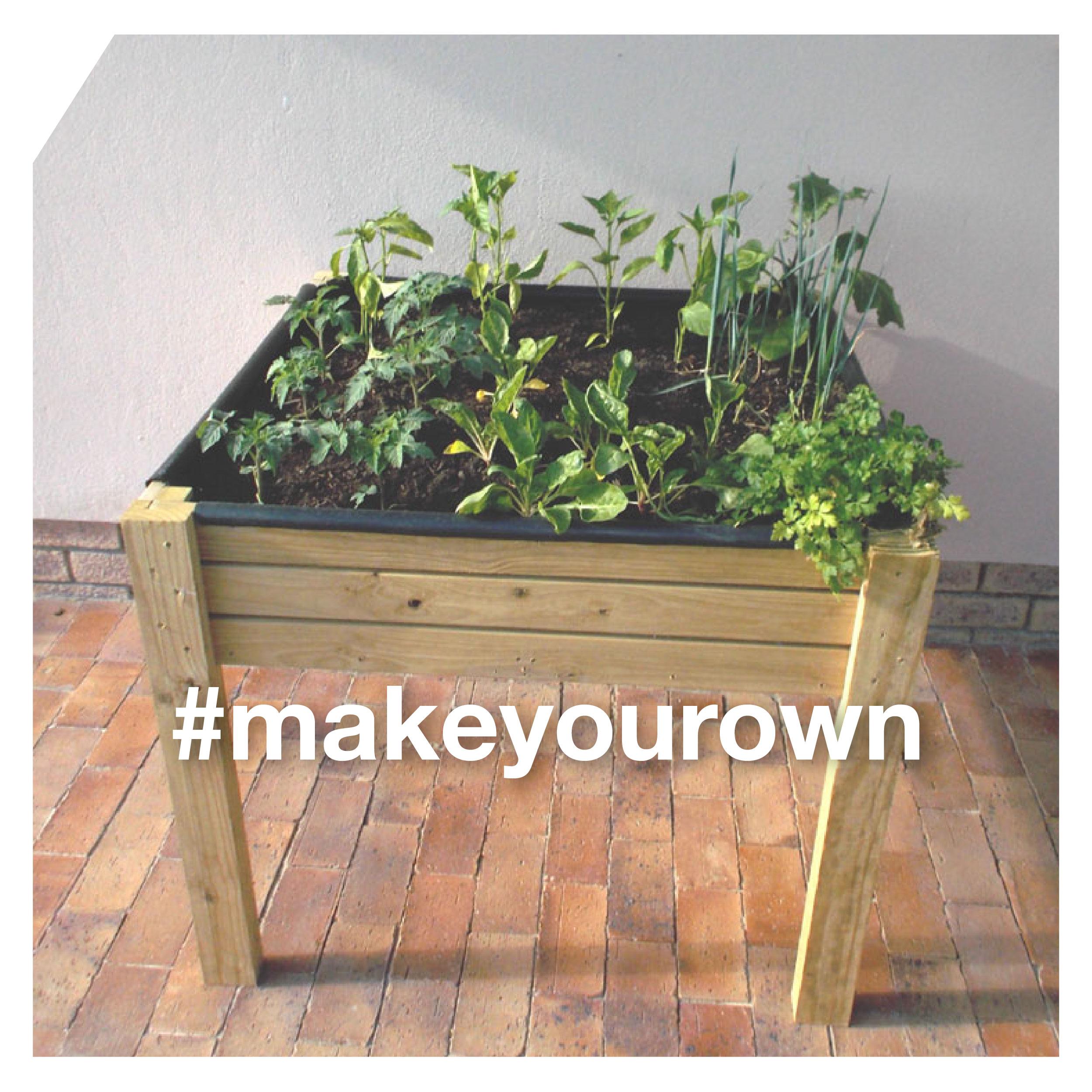 Grow a Veggie Garden