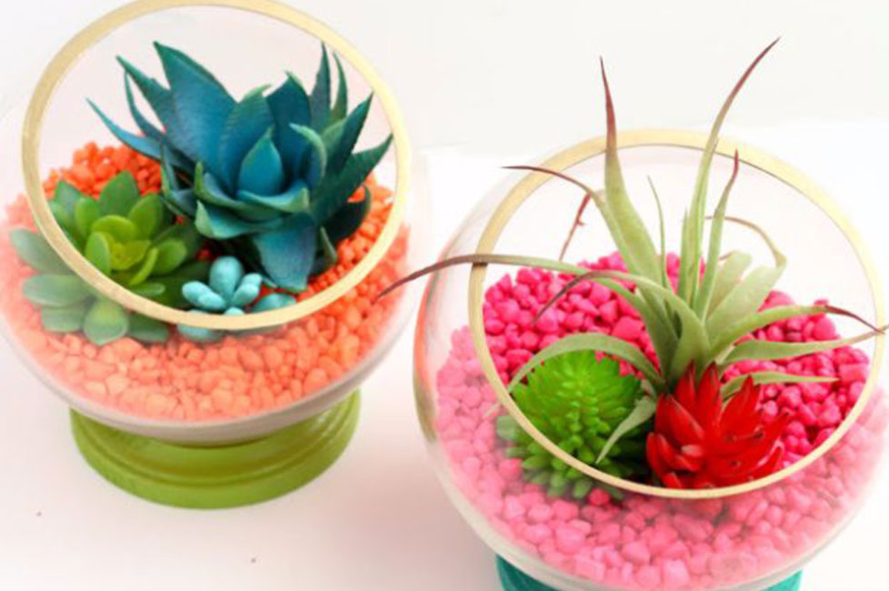 how to make a terrarium for kids