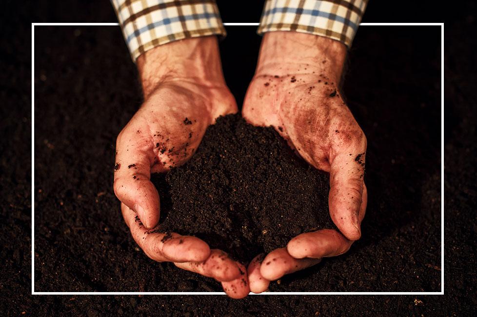 Composting Main Image