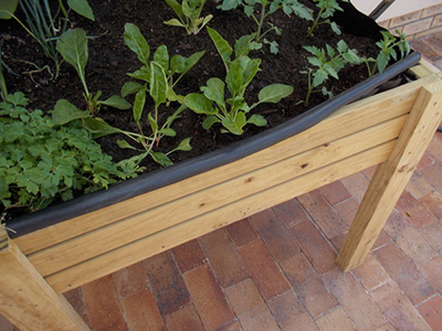 Make a Reaised Vegetable Garden 26