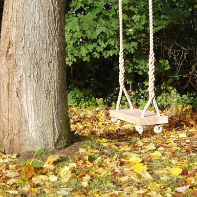 Make this great Garden Tree Swing