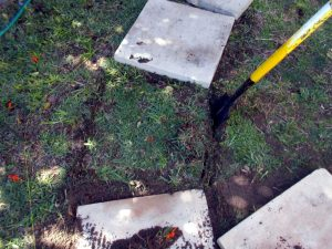 Paving Porject Image 6